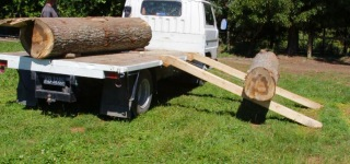 How to Load Logs on a Truck!!!