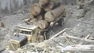 Golden Years of Logging-Vintage Logging Footage