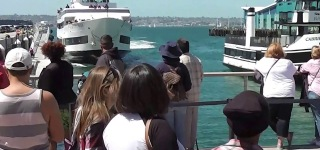 People Narrowly Escaped Death as Whale Watching Cruise Ship Crashes into Dock