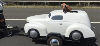 Check Out The World's One of the Luckiest Dogs and Its Cool Ride