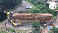 This Is How to Drive a Huge Logging Truck on a Very Tiny Bridge in the Mountains